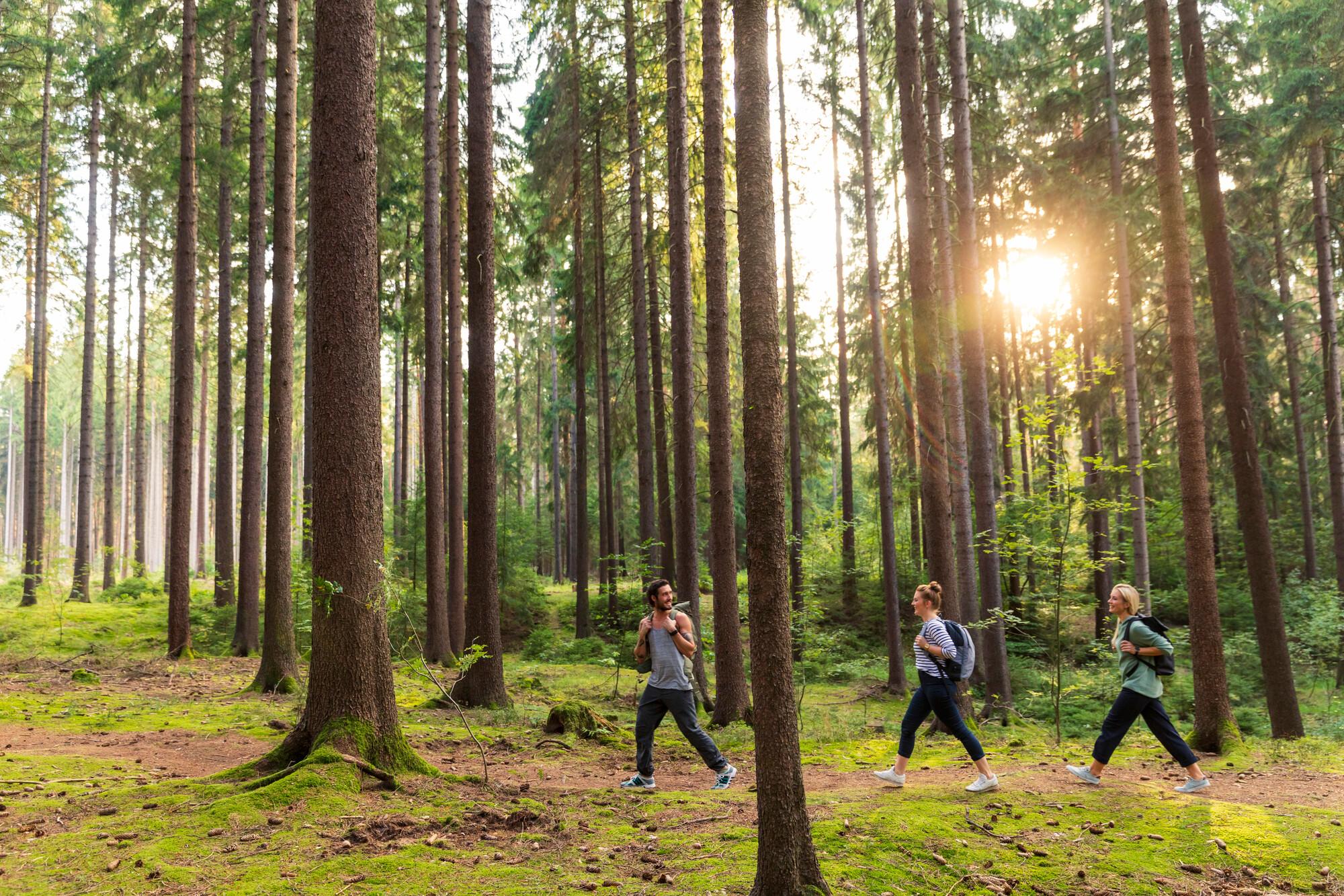 Objevme přírodu v Drážďanech a v Polabí
