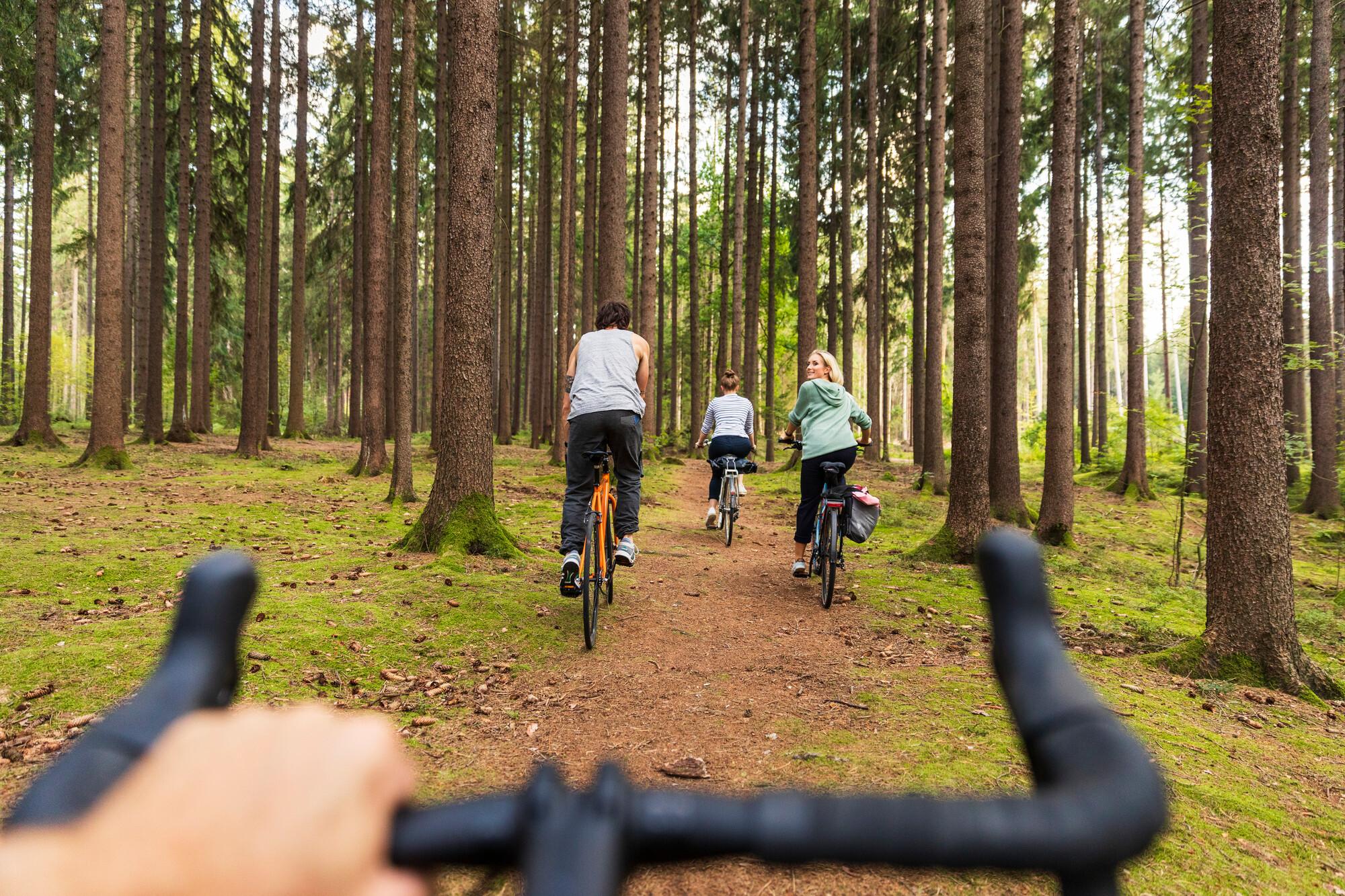 Dresdner Heide Rad fahren